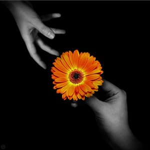 love_is_a_question_by_blahizmyname.jpg